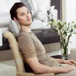 Amma Massage Pillow